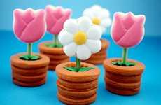 Tantalizing Terracotta Cookies