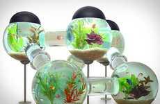 Maze-Like Fish Tanks