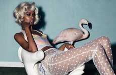 Provocative Flamingo Editorials