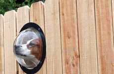 Spying Canine Orbs