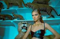 Exotic Exhibitionist Lookbooks