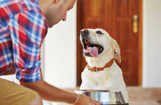 Pet-Friendly Employee Perks