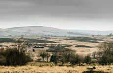 Landscape-Blending Abodes