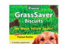 42 Anthropomorphic Dog Products
