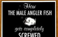 Informative Fish Cartoons