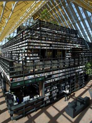 Towering Library Stacks