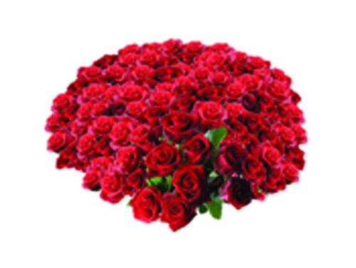 £10,000 Rose Bouquet