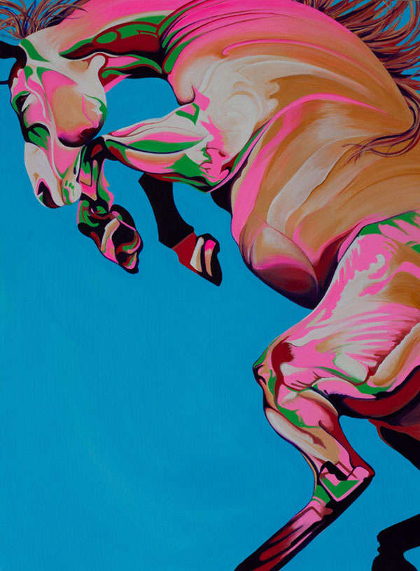 Psychedelically Shaded Horse Illustrations