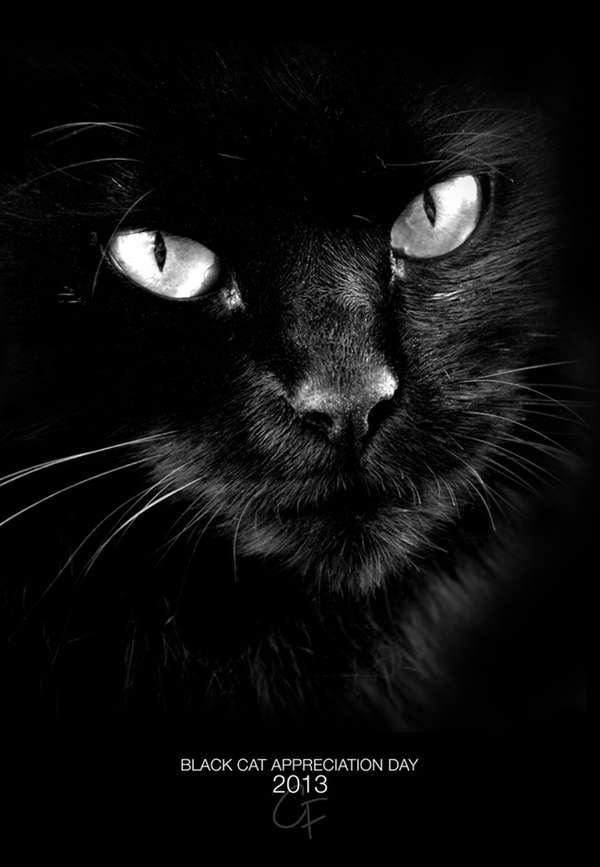 Black Cat Appreciation Day Poster