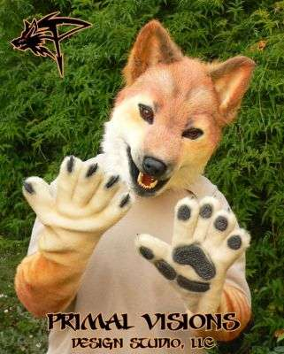 Fox Obsessions